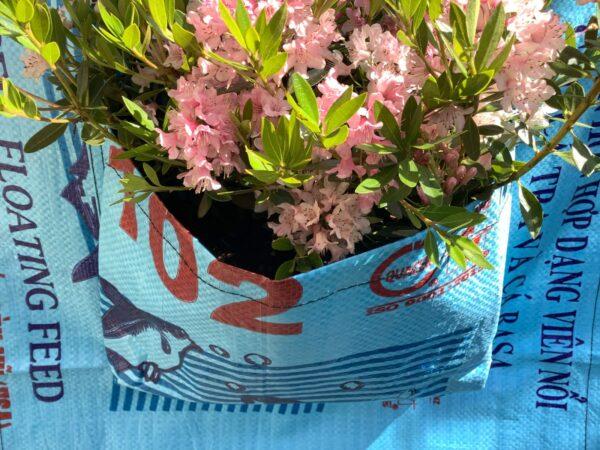 Bead Bag Wandbehälter Pflanzenbehälter Blumentopf Blumen Pflanzen Gefäss
